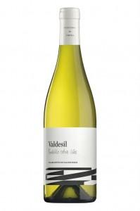 Valdesil Bottle Shot